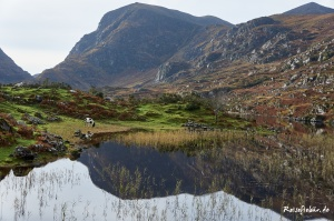 irland gap of dunloe see pony