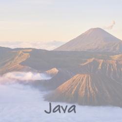 java_d