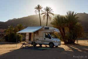 marokko camper unter palmen